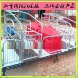 雲南雙體母豬產牀質優價廉廠家直銷母豬分娩牀