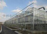 建設一畝地的溫室大棚需要多少錢