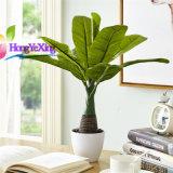 模擬芭蕉葉綠植 模擬香蕉樹盆栽