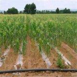 蔬菜溫室 大棚微灌設備 大棚滴灌設備批發廠家