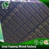 建築模板 /楊木芯模板/松木芯模板