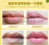 廣州雅清化妝品有限公司定製潤脣膏淡化脣紋補水滋潤防乾裂男女可用