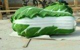 農業園生態園廣場模擬果蔬雕塑擺件玻璃鋼雕塑大白菜