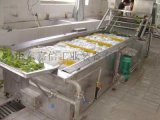氣泡式果蔬清洗機洗菜機 高壓噴淋清洗機定製
