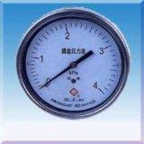 膜盒壓力錶(YE-60/100/150)