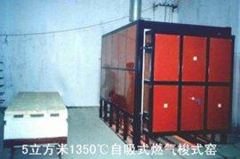 陶瓷窯爐(WTSSY1)