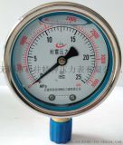 耐震雙刻度壓力錶YN-60/75/100