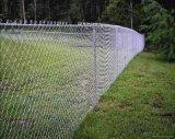 生產銷售 鍍鋅勾花網 養豬鐵絲網 篩網鐵絲網 雞籠鐵絲網