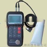 超聲波測厚儀NDT310(鑄鐵)