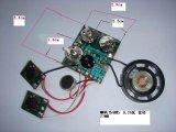 錄音IC(Win8075, Win8078)