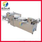 供應水果清洗機青棗清洗生產線 高壓噴淋清洗設備