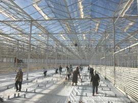 連棟溫室大棚-智慧大棚廠家-廣源溫室廠家直銷