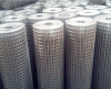 供應養雞鍍鋅網 圍欄圈玉米網 熱鍍鋅鐵絲網 圍欄網  隔離養殖網