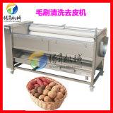 多功能去皮機 TS-M800剝皮機 土豆剝皮機 芋頭去皮機