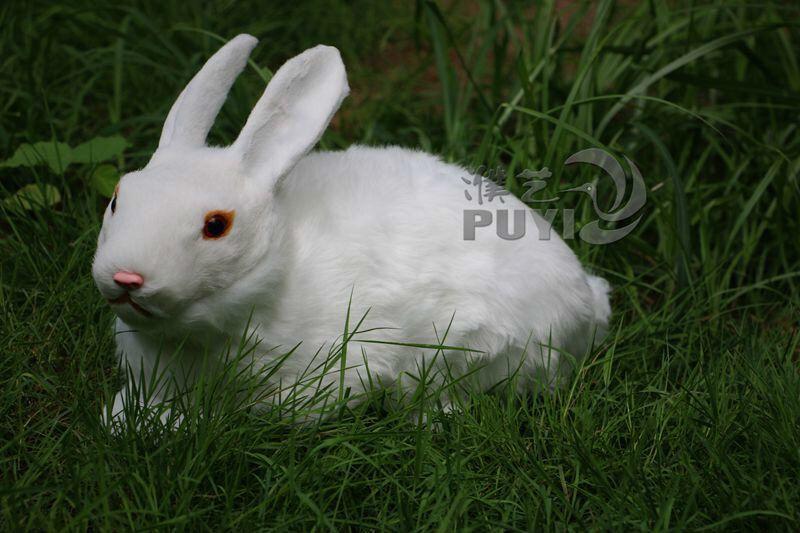 小白兔\/大白兔\/玉兔\/可爱小白兔\/兔子摆件\/家居