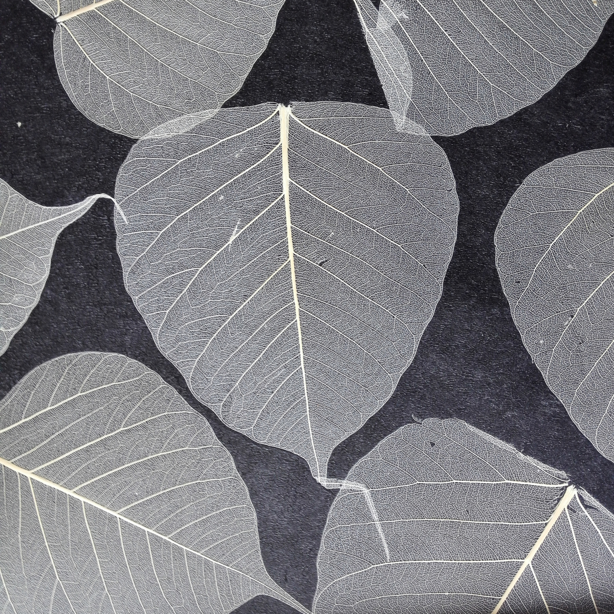公司系列產品主要貝殼牆紙系列、木皮牆紙系列、手工打皺牆紙系列、水晶珠牆紙系列、木皮/碎貝殼/報紙編織牆紙系列、竹編藤編牆紙系列等天然材質特殊材料,品種齊全,形式多樣。產品從設計到工藝上都具有獨到的風格,並可根據客戶的具體要求設計,生產出樣式新穎,款式獨特的裝飾材料產品,廣泛應用於別墅、酒店、會所、居家等項目。公司具有一支專業的設計和施工隊伍,能爲客戶提供最優質的方案、最保質的施工和最周到的服務。充分保證了公司所經營產品每一塊領域的專業保障,並得到了廣大用戶一致好評。 樹葉牆紙介紹:樹葉牆紙也稱菩提葉牆紙,
