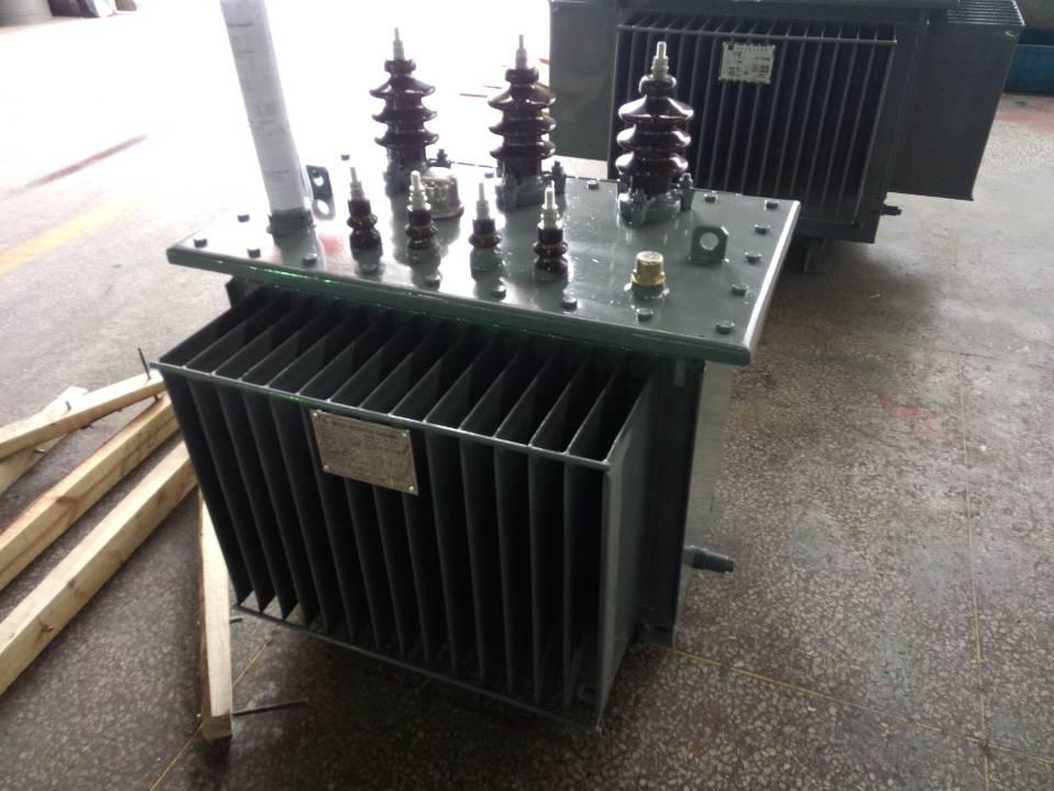 s11-160/11kv油浸式变压器图片