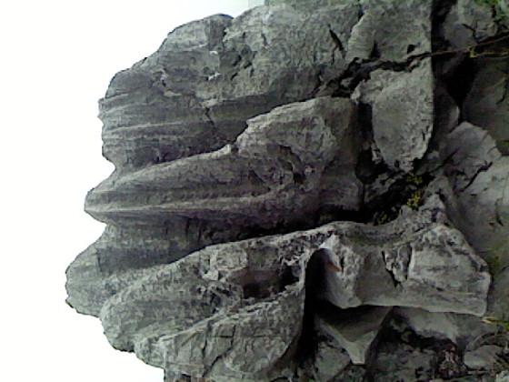太湖石 3图片,太湖石 3高清图片 浙江省建德市李家镇太湖石销售中图片