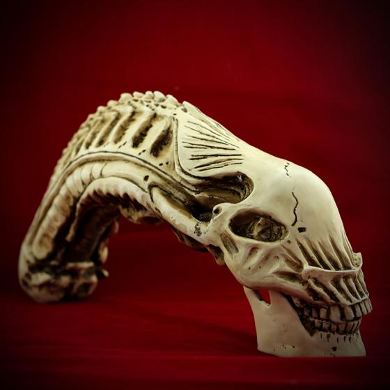 材质:合成树脂|类型:动物骨骼|制作工艺