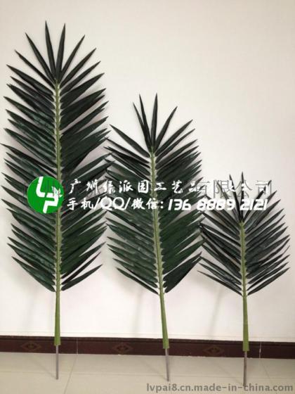 模拟椰子树叶 海枣树叶