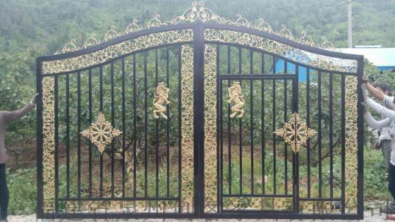 庭院门大门欧式大门平开门推拉门围墙大门别墅门对