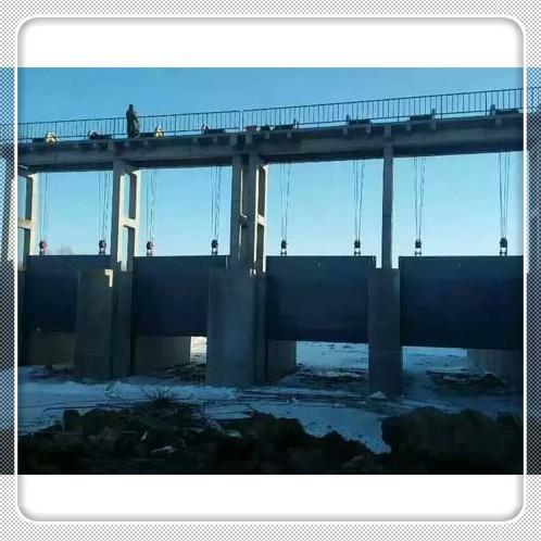 水利工程專用啓閉機閘門,河北啓閉機閘門